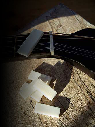 Parlor Guitar Service and Repairs